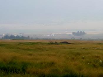 field overlooking farming valley in morning fog