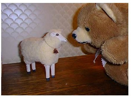 lamb and tia