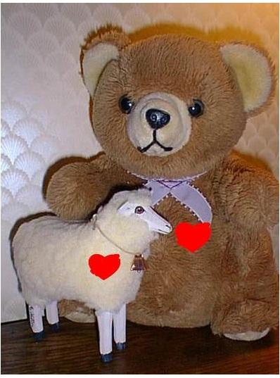 tia and lamb heart
