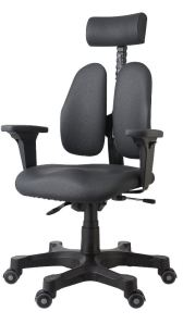 ergonomic chair with split back and headrest