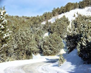 looking down a winding road with snow cover and plaw banks. The light is blue and bright.