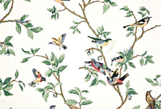 little birds wallpaper