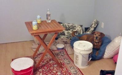 red rug, pillows, dog in dog bed, outdoor bistro table with soft drinks and two 5 gallon buckets