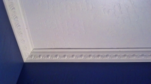 white ceiling with deep blue purple walls with egg and dart crown molding