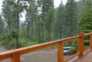 view off deck toward forest with wet snow falling