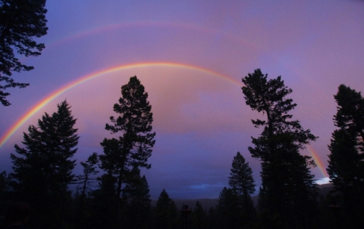 double full rainbow in twilight with dark trees in foreground.